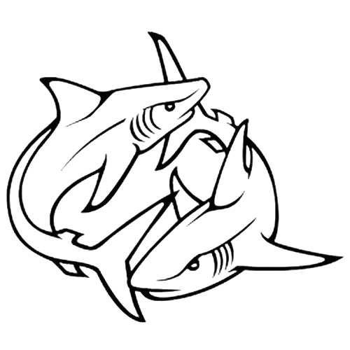 shark tat tattoo 14