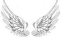wings tat tattoo 01