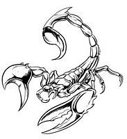 scorpion tat tattoo 04